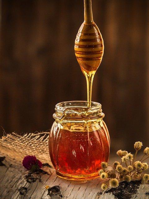 Pourquoi les abeilles sont si importantes ?